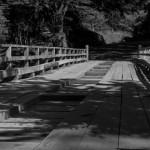 Old Bridge in Nahuelbuta