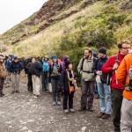 Torres del Paine Line of People