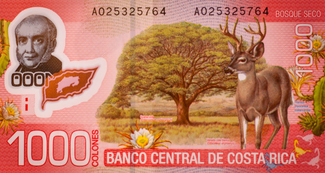 Red 1000 colones bill from costa rica