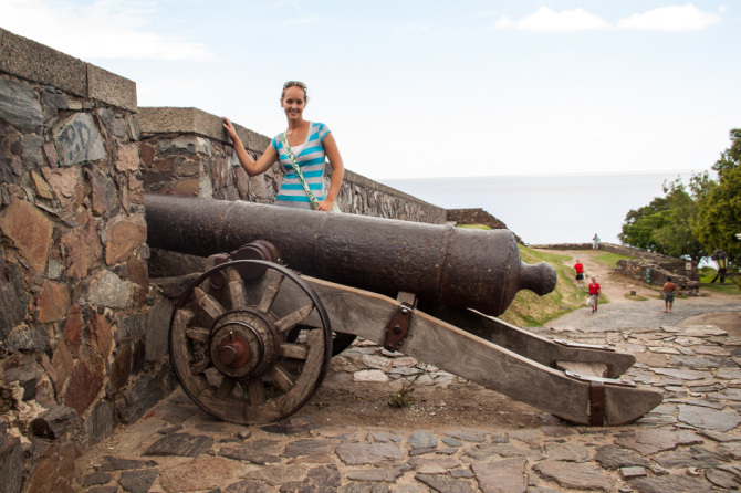 Cannon Defending the Walls
