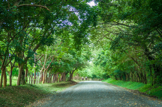 Country Roads in Costa Rica