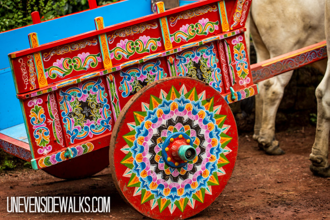 Traditional Cart Pulled by Oxen