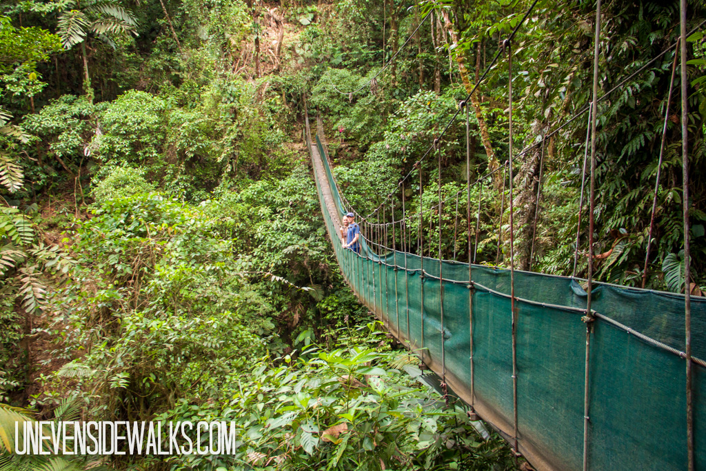 Hanging Bridge in Costa Rican Jungle