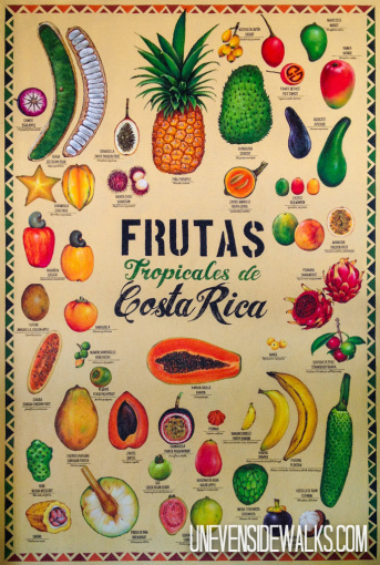 Tropical Fruits of Costa Rica