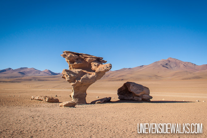 Arbol de Piedra, Tree of Rock in the Middle of the desert