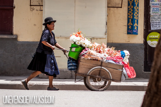 Lady Selling Flowers from a Little Hand-Pushed Wagon