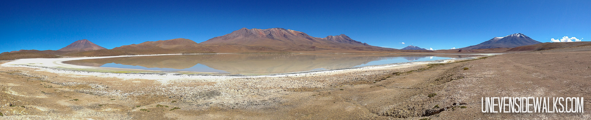 Laguna Panorama Picture in Bolivia by Lake Side