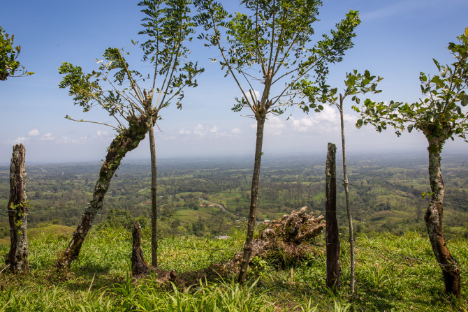Mountain view of the Costa Rica Green Countryside