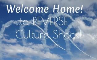 Reverse Culture FI
