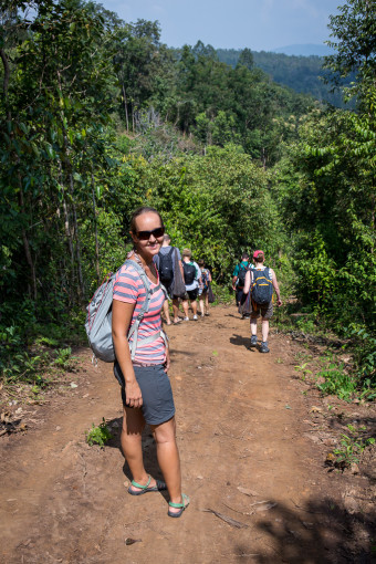 Hiking Trail in Beautiful Jungle