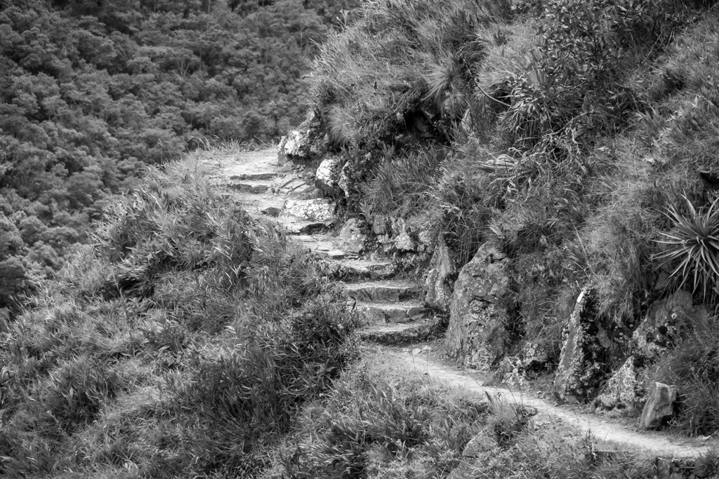 Inca Trail BW