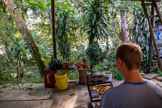 Working in the Costa Rica Jungle