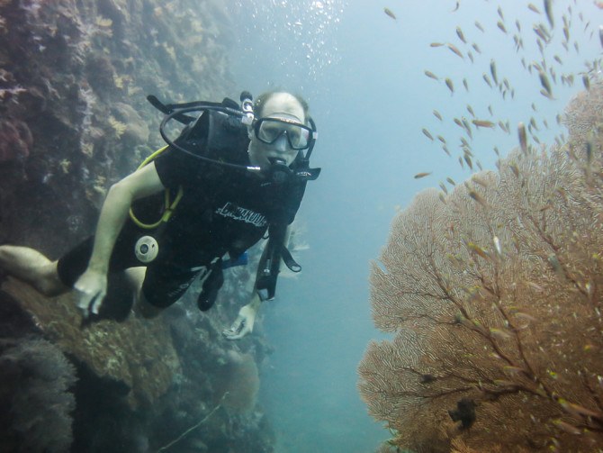 Scuba Diving next to Sea Fan