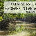 Mangrove Geopark FI2